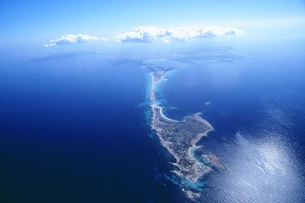 Las praderas de Posidonia Oceanica, Patrimonio de la Humanidad